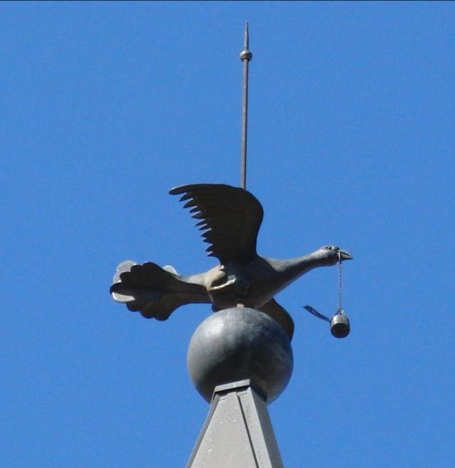 el pardal de Sant Joan