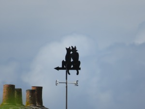 weather-vane-2678133_1920