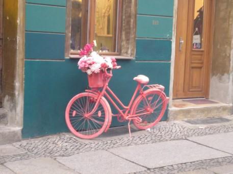 Chute de rosa